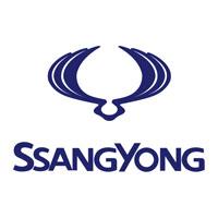 Ssang Yong Car Mats