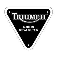 Triumph Car Mats